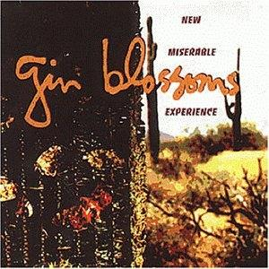 GinBlossoms-02