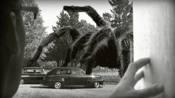 giant-spider01